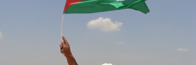 Palestinian man waves Palestinian flag at protest in Susya (photo: Mya Guarnieri)
